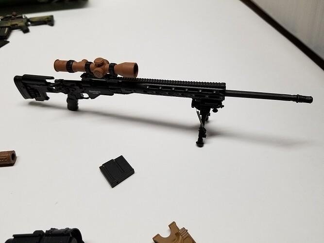 E&S Sniper XM2010 and Glock 10 s